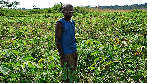 CRS trabaja con más de 8.000 agricultores para mejorar la producción agrícola mediante la implementación de nuevas técnicas. Foto de Emilie Greenhalgh/CRS