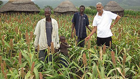 Beneficiarios de SILP de la comunidad Nyathela con personal de campo de Cáritas Swazilandia y cosecha de sorgo. Foto de Peter Clark / CRS
