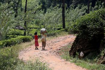 Veeraamma recoge té todos los días para apoyar la educación de su nieta. En la foto aparece con su nieta Thamu.